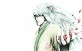 Картинка взгляд, рука, аниме, лепестки, арт, парень, Yu Yu Hakusho