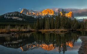 Картинка лес, горы, отражение, река, Канада, Альберта, Alberta, Canada, Канадские Скалистые горы, Canadian Rockies, Канмор, Canmore, …