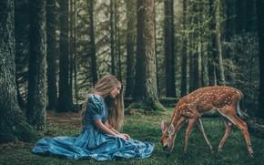 Картинка лес, девушка, доброта, волосы, мило, ситуация, платье, олененок, нимфа