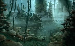 Картинка дорога, грибы, сооружение, ступени, Ancient forest