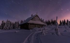 Картинка зима, лес, снег, пейзаж, ночь, природа, дом, дорожка