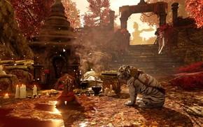 Картинка свечи, ступени, храм, мужчина, руины, белый тигр, tiger, святилище, Far Cry 4, осенний день, милитва