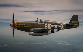 Картинка Mustang, Истребитель, USAF, Вторая Мировая Война, North American P-51 Mustang, P-51B Mustang