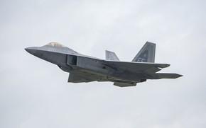 Картинка полёт, самолёт, серое небо, F-22A