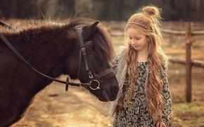 Картинка животное, девочка, пони, ребёнок, Виктория Дубровская