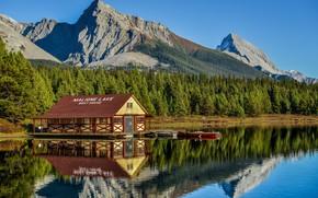 Картинка лес, озеро, дом, парк, фото, Джаспер