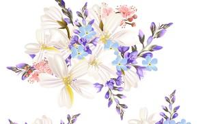 Картинка белый, цветы, фон, текстура