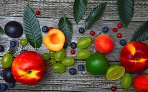 Обои ягоды, Фрукты, Виноград, персик, смородина, Черника