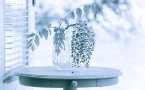 Картинка цветы, стол, ваза