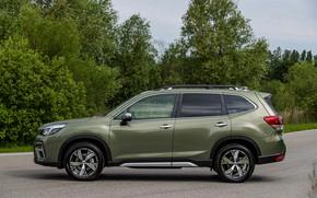 Картинка деревья, Subaru, сбоку, кроссовер, Forester, 2019