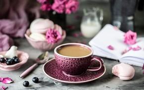 Картинка кофе, чашка, блюдце, зефир