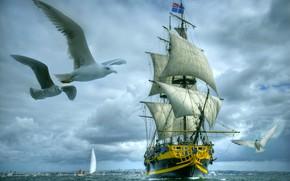 Картинка море, чайки, парусник