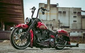 Картинка Harley Davidson, Harley-Davidson, Custom, Motorcycle, Thunderbike, By Thunderbike, EL DIABLO, Heavy Road Bike