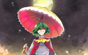 Картинка полнолуние, красные глаза, ночью, под зонтом, адская ухмылка, Kazami Yuuka, проект Восток, маньячка, touhou project, …