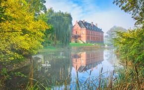 Картинка осень, небо, вода, деревья, птицы, туман, озеро, дом, пруд, отражение, замок, ветви, берег, листва, вид, …