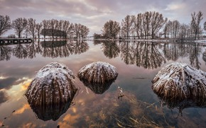 Картинка зима, мост, озеро