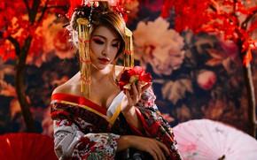 Картинка цветок, модель, Япония