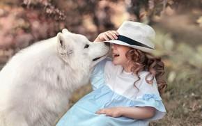 Картинка смех, собака, шляпа, девочка, самоед