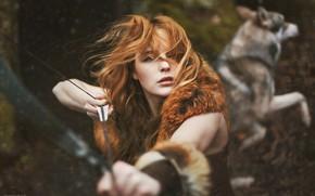 Картинка лес, волк, рыжая девушка