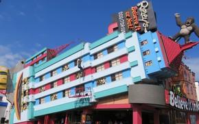 Картинка city, building, attraction, king kong, niagara