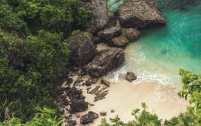 Картинка trees, sea, landscape, Beach, nature, rocks, sand, plants, cliff, top view