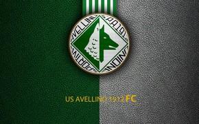 Картинка wallpaper, sport, logo, football, Italian Seria A, US Avellino 1912