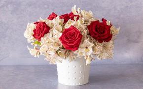 Картинка цветы, розы, букет, красные, горшок, альстромерии