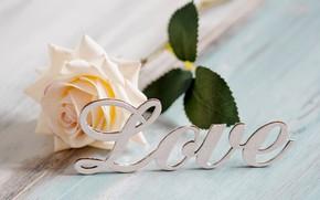 Картинка текст, роза, Любовь