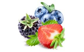 Картинка ягоды, черника, клубника, витамины, ежевика