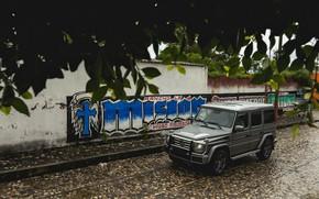 Картинка серый, стена, улица, Mercedes-Benz, внедорожник, 4x4, G-Class, 2017, G 500, V8