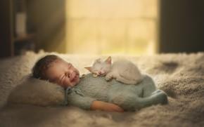 Картинка кошка, дом, ребёнок