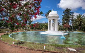 Картинка деревья, парк, фонтан, Uruguay, Уругвай, Fuente de Venus, Пирьяполис, Фонтан Венеры, Piriápolis