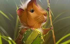 Картинка воин, морская свинка, by GaudiBuendia