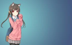 Картинка фон, девочка, неко, свитер, кошечка, туника