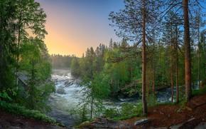 Обои лес, река, Финляндия