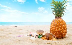 Обои песок, море, пляж, лето, небо, отдых, очки, ракушки, summer, ананас, beach, каникулы, sea, sand, paradise, ...