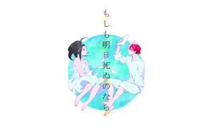 Картинка романтика, пара, My Hero Academia, Boku No Hero Academia, Тодороки Шото, Моя Геройская Академия, Яойрозу …