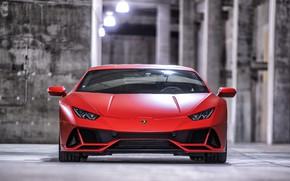 Картинка Lamborghini, Huracan EVO, Lamborghini Huracan EVO