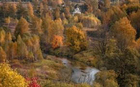 Картинка осень, деревья, пейзаж, природа, река, долина, церковь, кусты, Истра, Андрей Чиж