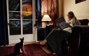 Картинка кот, глаз, комната, женщина, динозавр, окно, гигант