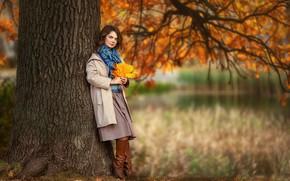 Картинка осень, взгляд, листья, девушка, природа, поза, парк, дерево, настроение, пальто, Бармина Анастасия