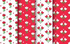 Картинка белый, цветы, красный, фон, текстура, red, rose, white, patterns, Collection