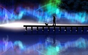 Картинка ночь, собака, северное сияние, мужчина, падающие звезды