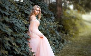 Картинка девушка, природа, платье, блондинка, локоны, плющ, Максим Чурляев