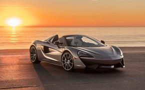 Обои McLaren, spider, 570s