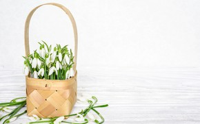 Картинка весна, подснежники, корзинка