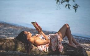 Картинка девушка, свет, поза, озеро, дерево, берег, книга, Jurgen Bauer