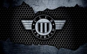 Картинка wallpaper, sport, logo, football, Libertad Asuncion