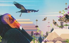 Картинка Минимализм, Бабочка, Птица, Птицы, Стиль, Бабочки, Насекомые, Животные, Арт, Birds, Art, Style, Digital, Bird, Illustration, …