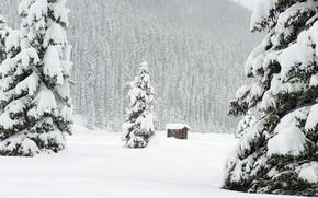 Картинка зима, лес, снег, горы, ветки, ели, склон, сугробы, дымка, домик, хвоя, ёлки, снегопад, зимняя, заснеженный, …